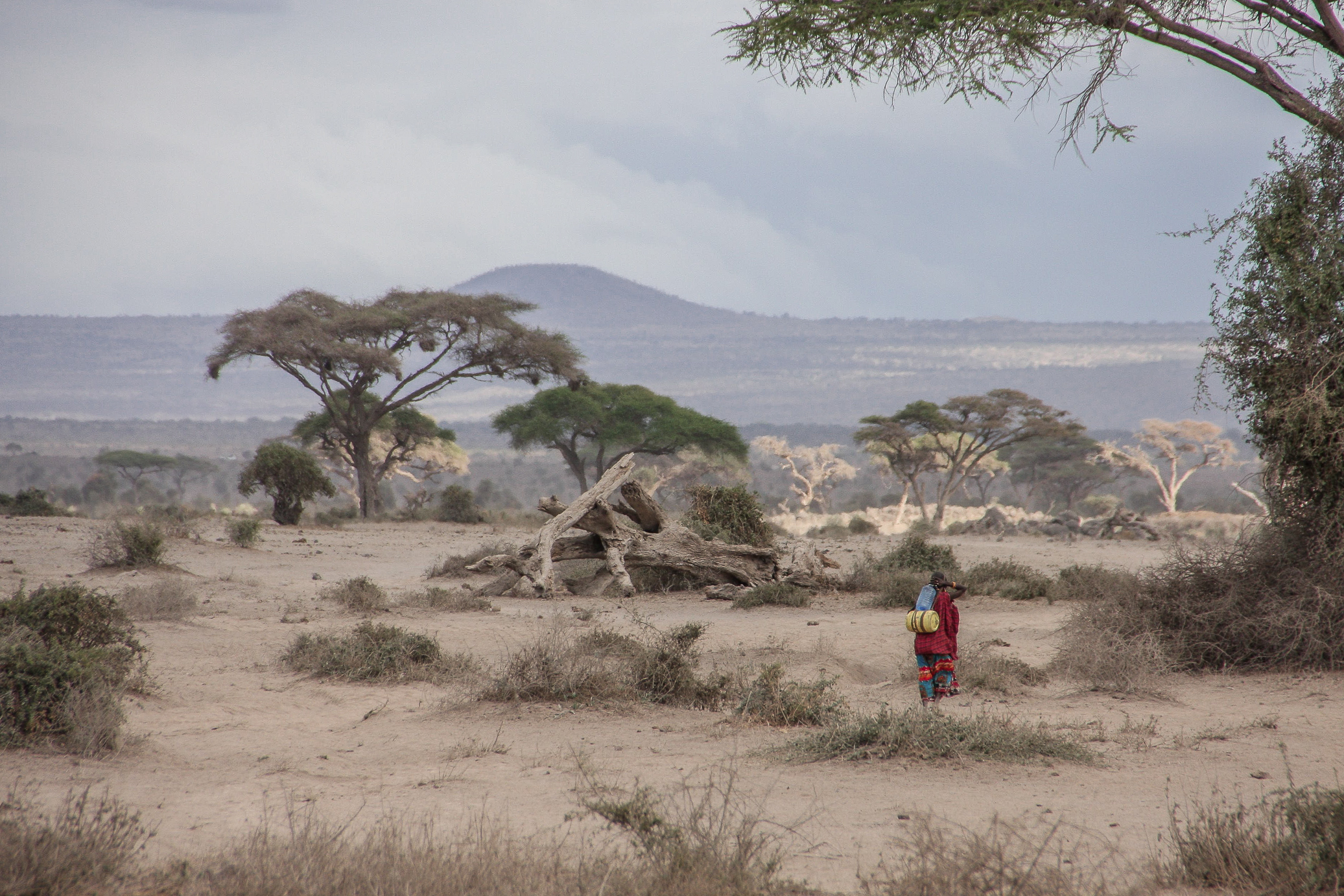 this masai woman had to walk for hours to get some water
